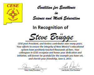 Steve Brügge's award